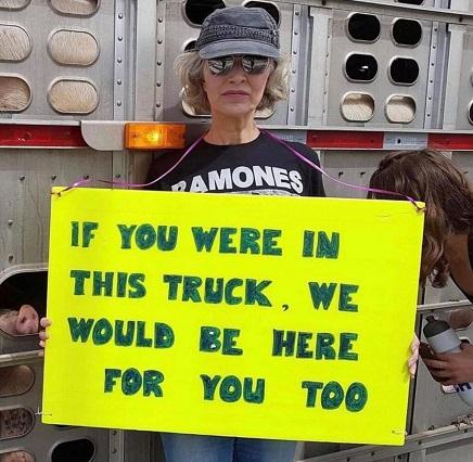 נהג משאית החזירים שרצח את הפעילה מייגן ראסל מואשם בנהיגה לא זהירה