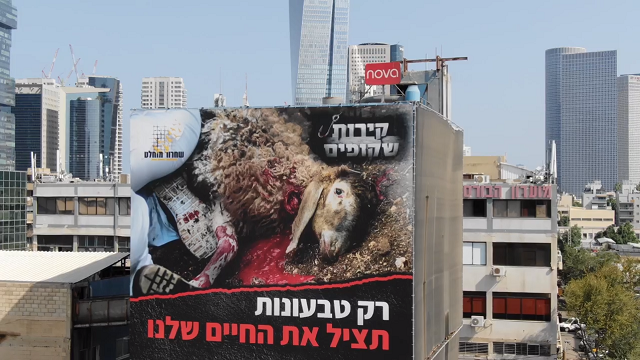 שלט חוצות עם תמונה של שחיטה הוצב מעל נתיבי איילון