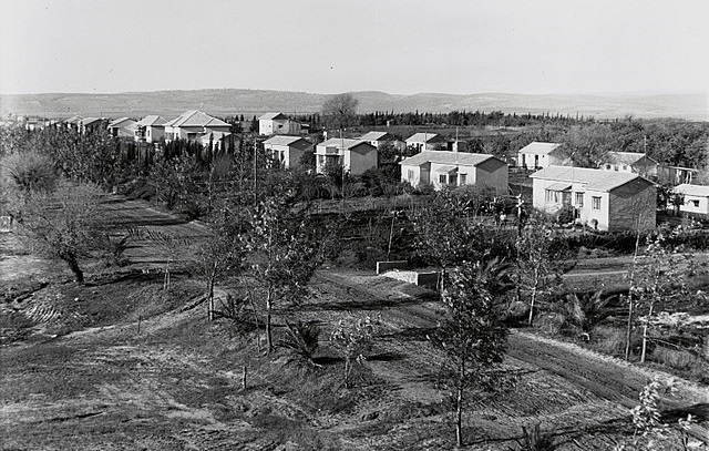 הפתעה: מהי בירת הטבעונות הישראלית?