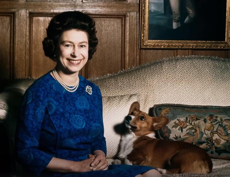 אליזבת, מלכת בריטניה, החליטה להפסיק להרבות כלבים ובמקום זאת - לאמץ